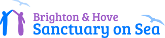 Rottingdean Preservation Society logo